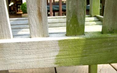 Di-Ard algae lichen and moss killer for seats
