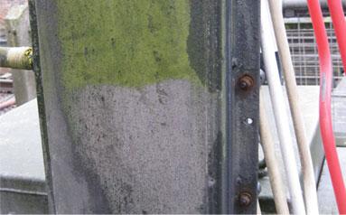 Di-Ard Algae Moss Killer for wooden fences