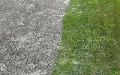 Di-Ard Algae Moss Killer for concrete driveways